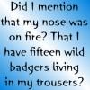 B5 - badgers