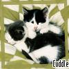 bev_crusher1971: Cuddle