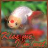 Lionhead//Kiss me!