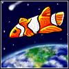 clownfish shuttle