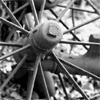 Mizarchivist: Bike wheel