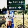weedprinzessin userpic