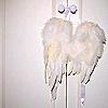 xrideacowboyx userpic