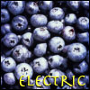 Electric BlueBerry