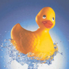 what is the function of a rubber duck?