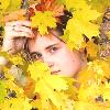 В листве