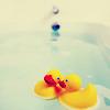 sarmoti: Ducks!