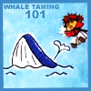 Whale Taming 101