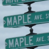 Maple Avenue // Graphics By Kirra + Kristen