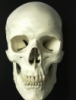 bonesword userpic
