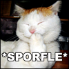 Sporfle!Kitty! (Sara Jaye@JF)