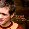 Owlie Wood: Mr Sunshine