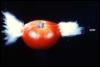 Sweet Ol' Berwyn: tomato