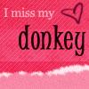 miss my donkey