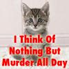 kitten murder