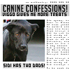 Charly: Sidi canine confessions by jenlynn820