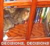 decisions...