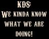 k_d_s userpic