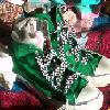 giantsquid_love userpic