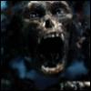 Jack the Monkey: jack skeleton