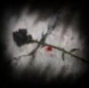 2yearslater userpic