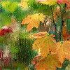 листья-дождь