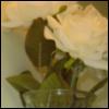 dsdancer8802 userpic