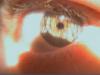 little_rakaia userpic