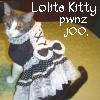 lolita kitty
