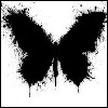 Лентяичка: бабочка ч/б