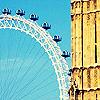 brienne08 userpic