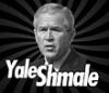 yale schmale
