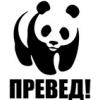 panda55 userpic