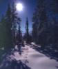snowpillow userpic