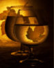 rualev: wine glass