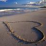 *andrea: beach heart