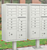 thelocalmailbox userpic