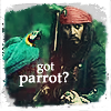 got parrot by lobeZna