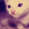 queenofwoe userpic