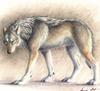 wolf_diary