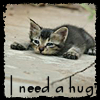 brycee_cat userpic
