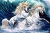 Wave o Unicorns