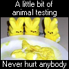laurel_tx: animal testing