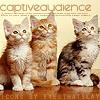 Charlene: Kitten - Captivated Audience