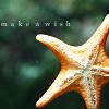 starfish wish