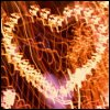 Lissanne: Heart