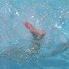 speak_one userpic