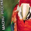 birddefender userpic