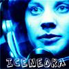 CeNedra Wood's Icons