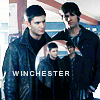 woman_of_: wincester Brothers